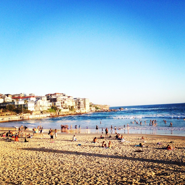 Surf Beach Bondi